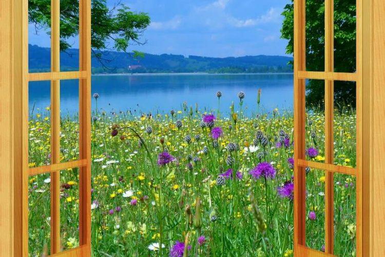 jakie wybrać okno drewniane?